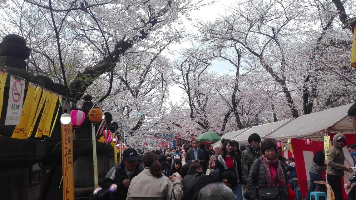 Tokyo – Ueno Park